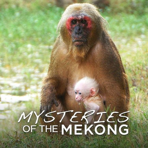 Mysteries of the mekong s1e6
